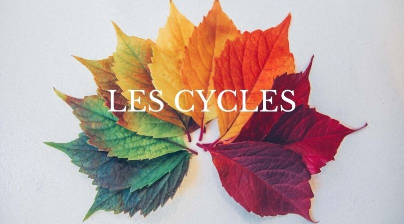 Les cycles – message 31/01/2021